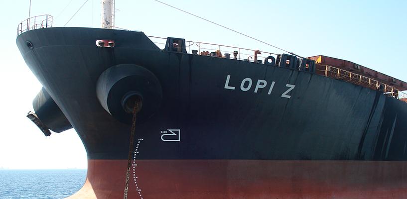 LOPI-Z